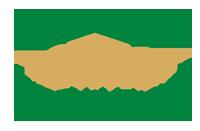 Stitis logo new